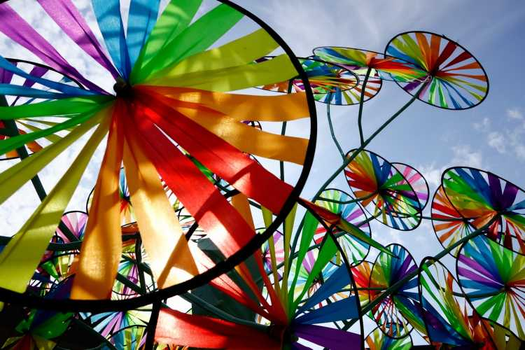 virginia beach event pinwheel palooza