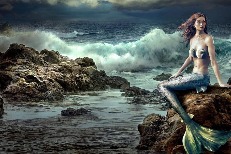 virginia beach event mermaid mondays
