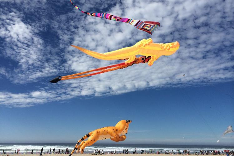 virginia beach event kite festival