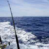 photo of fishing rod at waterman sport fishing