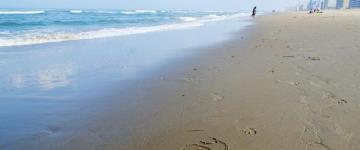 things to do in virginia beach may